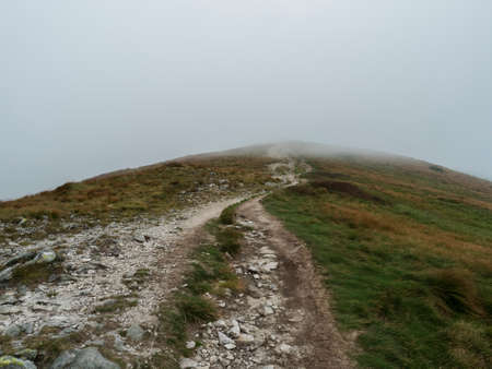 Footpath of hiking trail from Chopok at mountain meadow, grassy hill slopes with thick fog and clouds. Low Tatras mountains ridge, Slovakia, late summer windy day