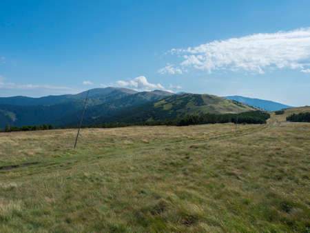 Footpath of hiking trail from Chopok ridge with mountain meadow, scrub pine and view of blue green hills ridge. Landscape of Low Tatras mountains, Slovakia, summer sunny day, blue sky background