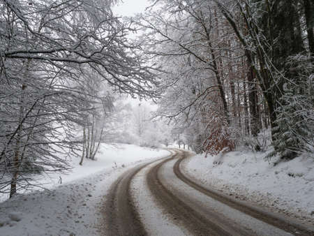 snow covered asphalt road curve in snowy frozen winter forest