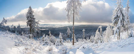 Panoramic winter landscape, view of Cakova vyhlidka viewpoint at fields, forest, villages and snowy spruce tree with snow covered branches. Brdy Mountains, Hills in central Czech Republic, sunny day
