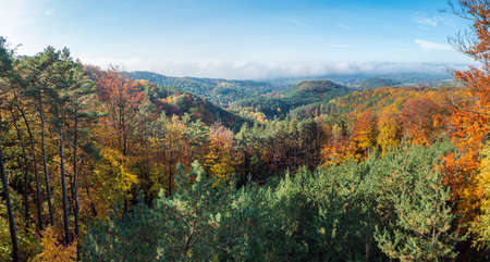 Panoramic view of colorful vivid deciduous beech and pine tree forest and hills from viewpoint called Vyhlidka na Rip at nature park Kokorinsko, Czech republic. Autumn sunny day.