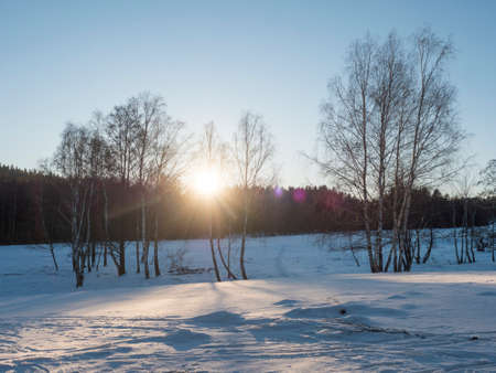 Sunset at snowy winter landscape with snow-covered field and birch tree and forest against daylight, Contre-jour, lense flare. Nature landscape background. Stok Fotoğraf