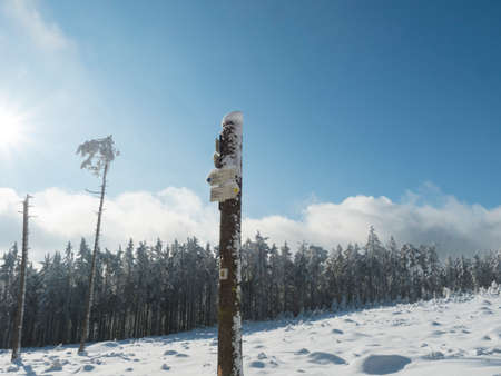 Czech Republic, Brdy mountains, January 9, 2021: Tree trunk with tourist signpost or guidepost at winter snow covered spruce tree forest, blue sky background, sunny day