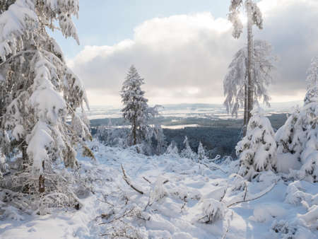 Beatiful winter landscape, view of Cakova vyhlidka viewpoint at fields, forest, villages and snowy spruce tree with snow covered branches. Brdy Mountains, Hills in central Czech Republic, sunny day