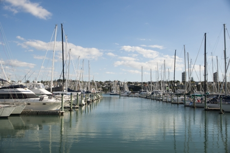 An image of a busy little harbour in Auckland Stock Photo