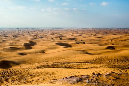 savant: Desert and Sand Dunes. Dubai.