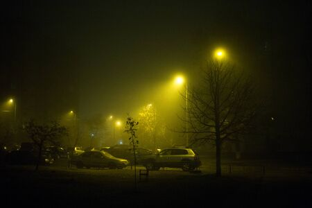 Highway at night in the fog in the city