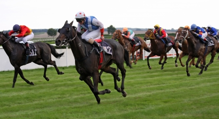 carreras de caballos: Carrera de caballos 01
