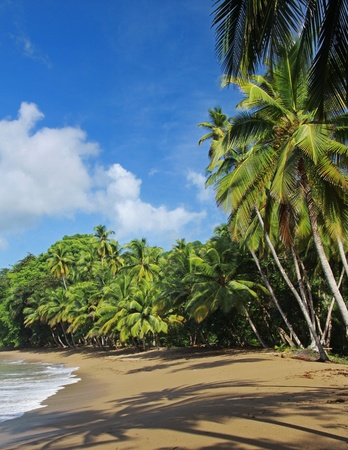 idylle: beach of the englishman