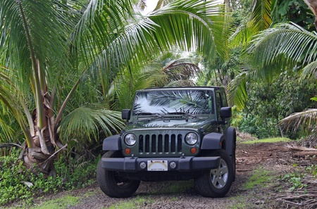 jeep: todo terreno cerca no (Kauai, no waii)