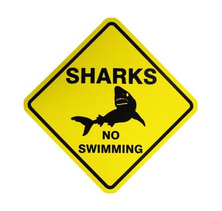 shark teeth: Tiburones - No nadar, sesi�n en Australia, aisladas sobre fondo blanco Foto de archivo