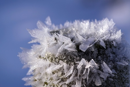 coldly: Details of ice crystals in the sun (Close-up) Stock Photo