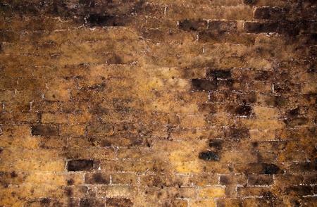 Ziegelwand innerhalb von einem alten Weinkeller als Hintergrund Standard-Bild - 12551180