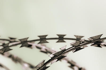 Barbed wire with copy space Stock Photo - 13799561