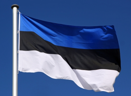 Flag of Estonia in the sun Фото со стока - 21675441