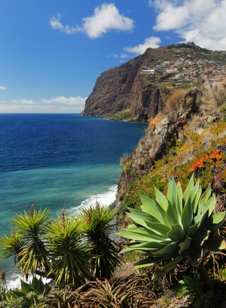 portugal agriculture: Cliff Cabo Girao at southern coast of Madeira  Portugal  02 Stock Photo