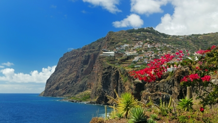 portugal agriculture: Cliff Cabo Girao at southern coast of Madeira  Portugal  -  view from Camara de Lobos