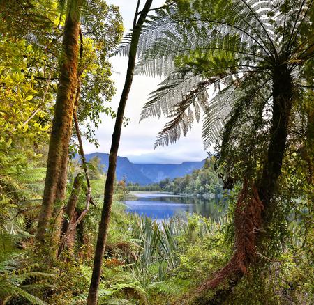 hdr: Lake Matheson, New Zealand - HDR image