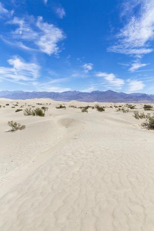 dune, Death Valley National Park, California, USA