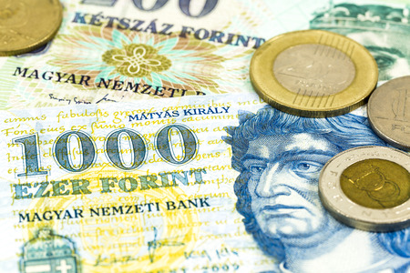 some hungarian forint bank notes and coins Standard-Bild