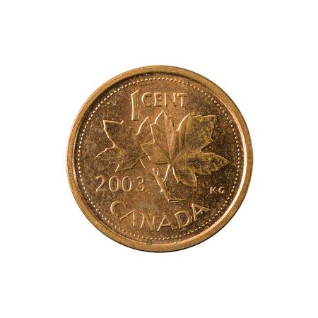 1 캐나다 달러 동전 (2003) 앞면 흰색 배경에 고립 된