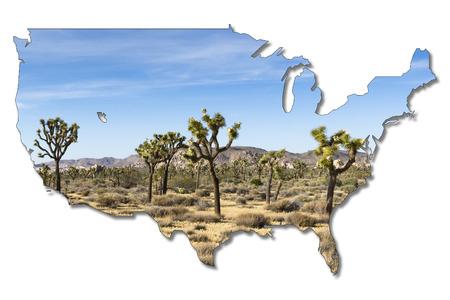 joshua tree national park: joshua trees in joshua tree national park, California, USA in shape of the USA