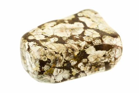 sanctification: tumble polished snowflakes obsidian pebbles