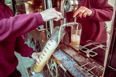 brewery: Man testing beer in brewery