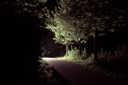 leading light: Path leading to light in the night
