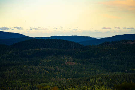 Powerlines cutting through the woodland of a mountain valley. . High quality photo Stock fotó