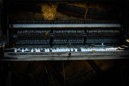 Close up black and white image of an abandoned wrecked piano sitting outdoors. . High quality photo