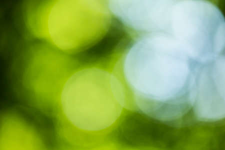 Image part of bokeh background series recorded in a forrest, showing diffuse blurred highlights of white, green and blue tints Stock Photo