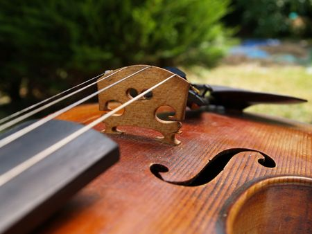 Closeup of a violin Stock Photo - 514314