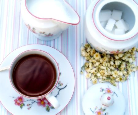 Cup of tea with sugar and milk Stock Photo - 514020