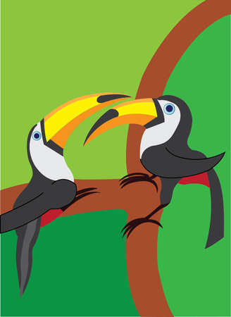 treasured: two toucan perching on a tree branch