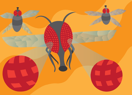 An enlarged visual representation of a flys compound eyes Illustration