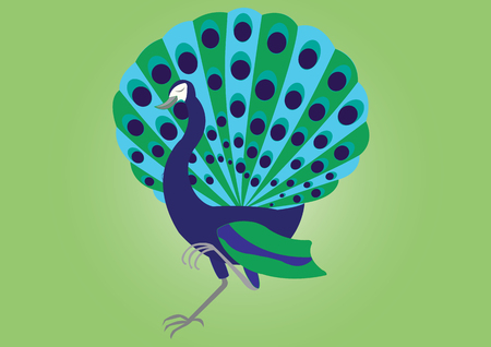 swelled: A proud Peacock strolling by Illustration