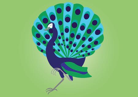 A proud Peacock strolling by Çizim
