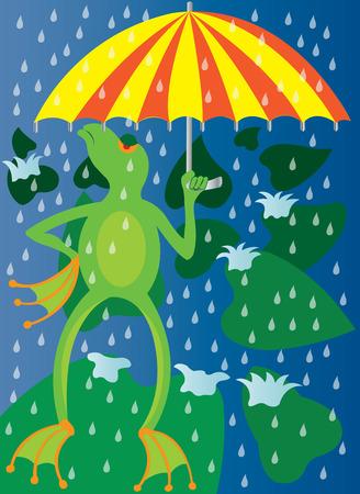 雨から彼の頭をカバーする傘カエル
