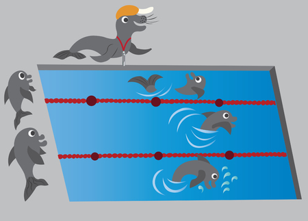 dolphins swimming in a competition