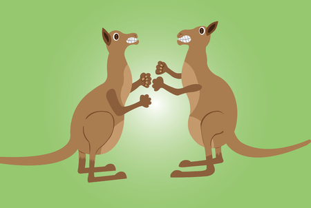 kangaroos fighting one another with fists and kicks,