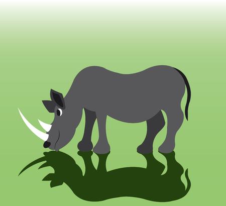 a rhino eating grass in a safari park