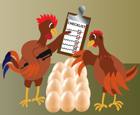 two chicken check their eggs to confirm they are all present,