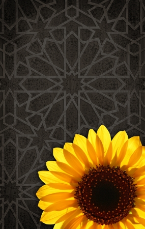 Colourful sunflower on the abstract background