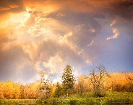 Autumn scenery  Beautiful gold fall in beautiful wood Stock Photo - 14693315