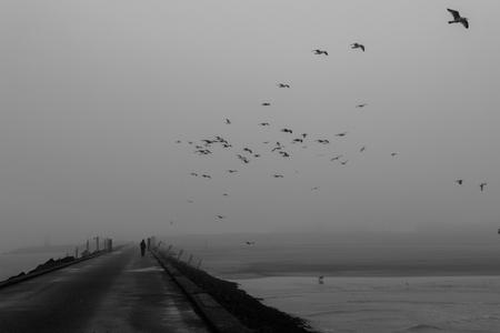 ijmuiden: Moody walk on the south pier in IJmuiden