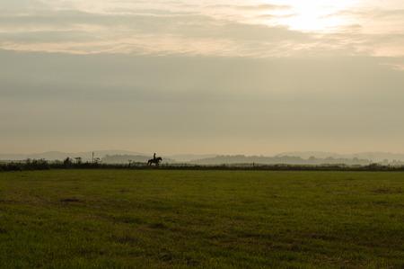 Een vrouw en haar paard tijdens een avond rit bij zonsondergang