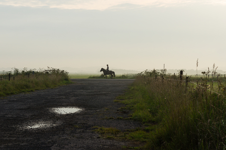 nederland: A woman and her horse during an evening ride at sunset