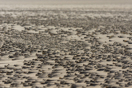 noord: the effects of windforce eight at the sand of the beach