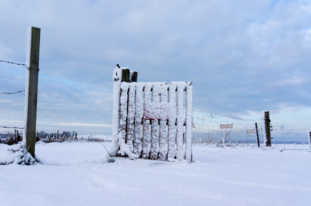 noord: Snow covered fence in the middle of nowhere in the Netherlands